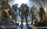 1206330_teenage-mutant-ninja-turtles
