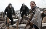 1201354_dawn-of-the-apes-