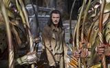 1209691_the-hobbit-the-battle-of-the-five-armies-3