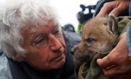 Jean-Jacques Annaud and wolf